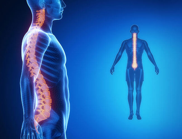 spinal cord injury teatment
